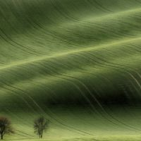 Moraviai_alom